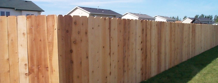 privacy fence - cedar