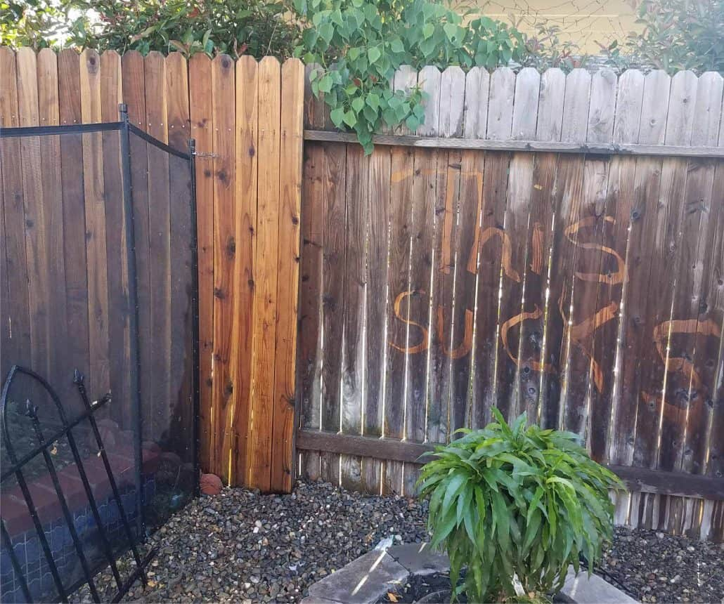 Wood Fence Funny Pic