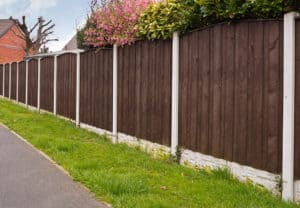 The Best Privacy Fences
